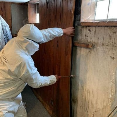 mold removal in chicago il home