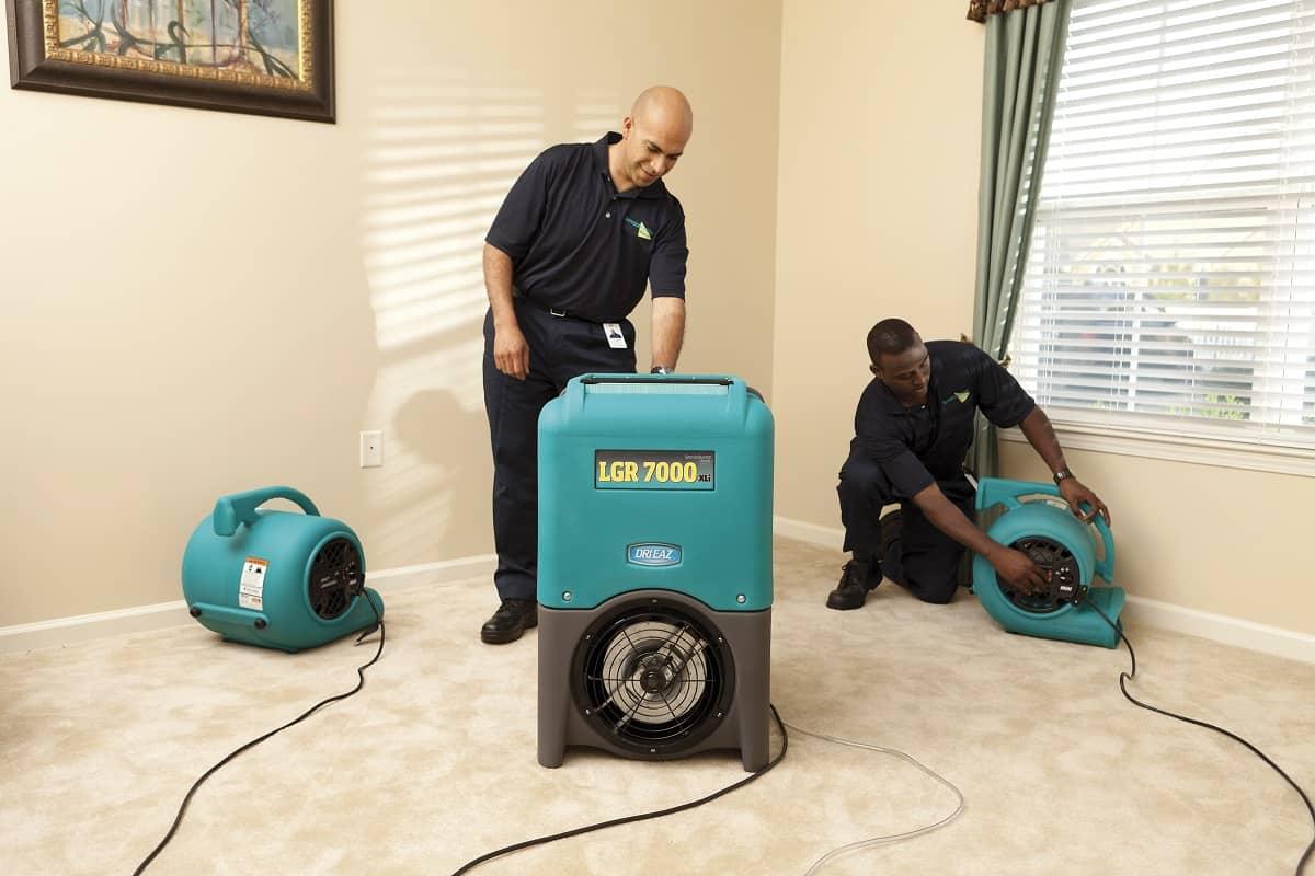 carpet water damage mold