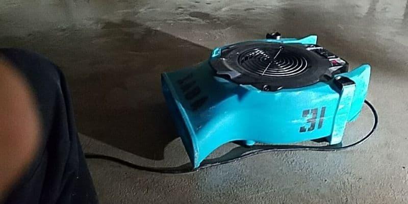 dehumidifier for wet carpet