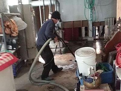 basement flood cleanup process chicago il