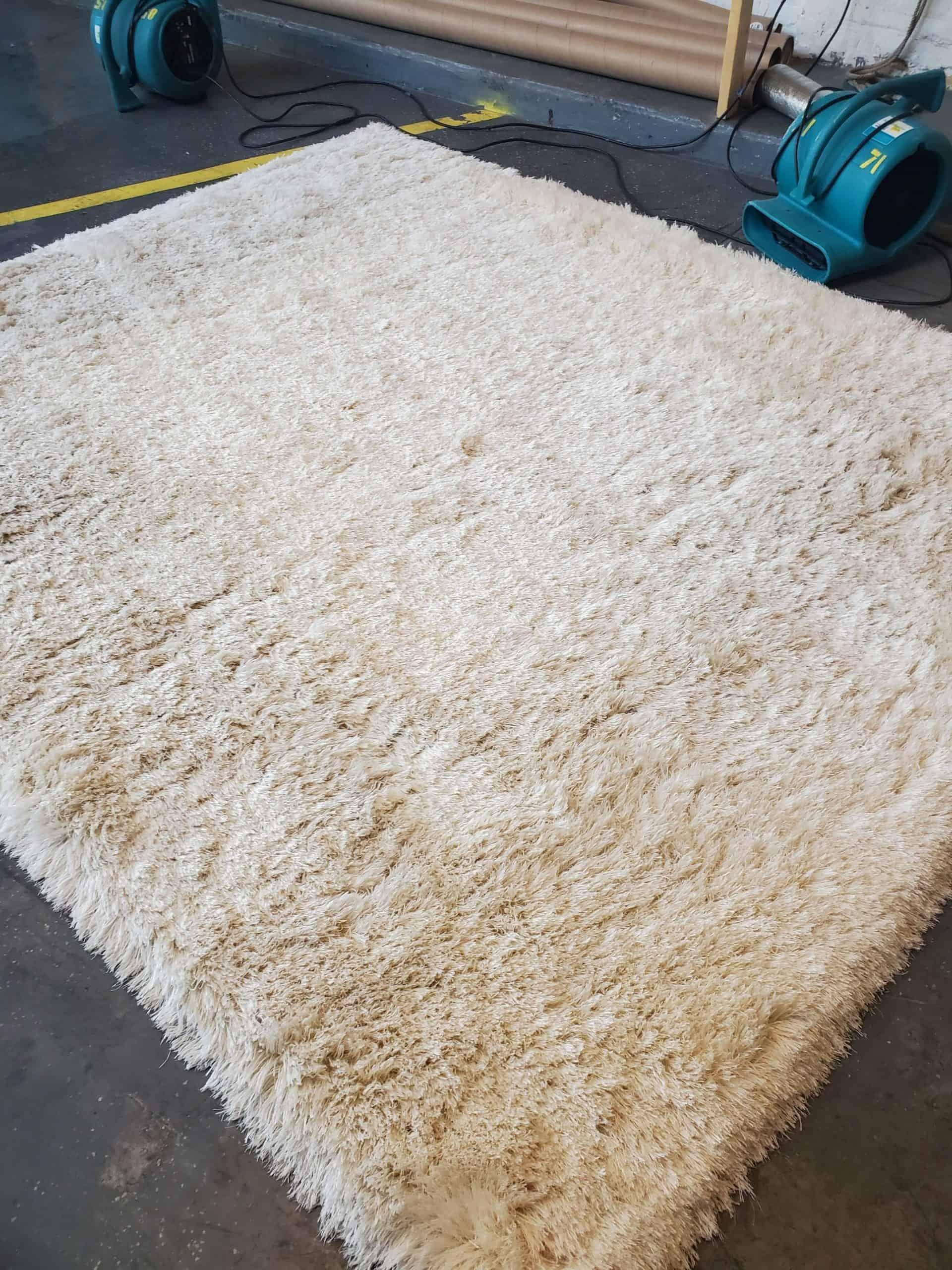 evanston rug cleaner